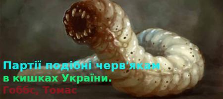 Выборы в Украине или фанерная демократия. Партии и партийные списки.